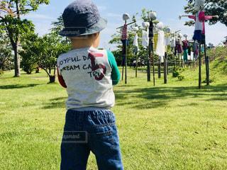 自然,芝生,緑,晴れ,後ろ姿,景色,子供,グリーン,男の子,2歳
