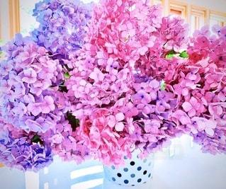 紫陽花 花束の写真・画像素材[3418968]