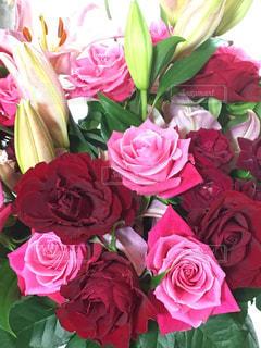 赤,花束,バラ,プレゼント,立派,結婚5周年,女子は嬉しい