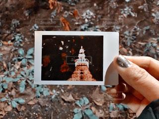東京タワーの写真・画像素材[573161]
