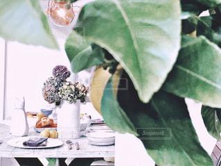 花,食卓,あじさい,花瓶,テーブル,紫陽花,レモン,flower,アジサイ,檸檬