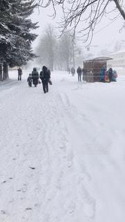冬,雪,海外,白,後ろ姿,背中,寒い,バス停,ベラルーシ,ミンスク