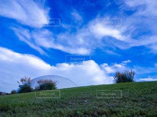 芝生と青い空の写真・画像素材[1108096]