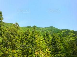 登山日和の写真・画像素材[1403956]