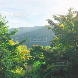 登山日和の写真・画像素材[1405313]