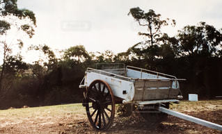 風景,空,木,屋外,レトロ,樹木,外国,旅行,タイヤ,オーストラリア,フィルム,海外旅行,Australia,自然光,リヤカー,車両,フィルム写真,ホイール,trolley,フィルムフォト,handcart