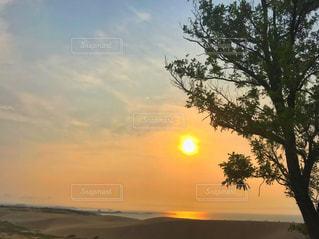 自然,風景,空,夕日,屋外,太陽,ビーチ,雲,晴れ,夕焼け,夕暮れ,水面,海岸,光,樹木,浜辺,砂丘,日本海,鳥取砂丘,鳥取県,太陽フォト