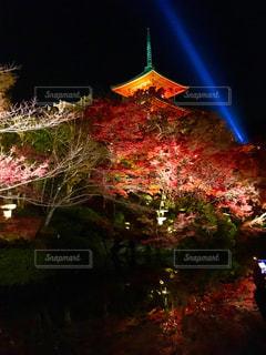 清水寺紅葉ライトアップの写真・画像素材[910110]