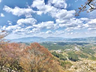 桜,サクラ,旅行,奈良,吉野山,吉野
