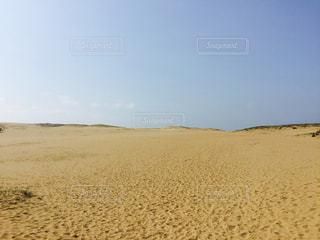 鳥取砂丘の写真・画像素材[687226]