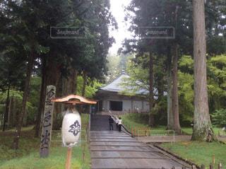 中尊寺金色堂の写真・画像素材[801741]