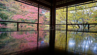 大きな窓の景色の写真・画像素材[883045]
