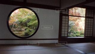 源光庵の紅葉の写真・画像素材[1641707]