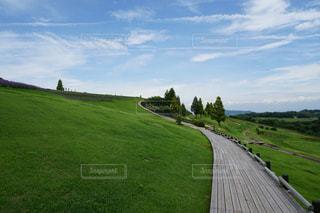 緑豊かな畑の大きな長い列車の写真・画像素材[3158421]