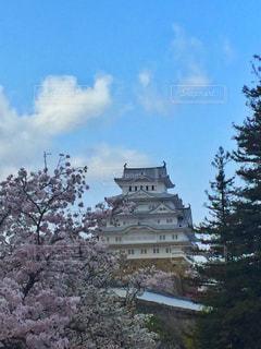 空と城の写真・画像素材[1135301]