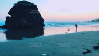自然,風景,海,空,夕日,屋外,夕暮れ,海岸,稲佐の浜,犬と私