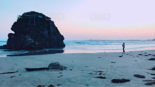 犬,自然,風景,海,空,夕日,屋外,夕暮れ,水面,海岸,稲佐の浜,犬と私