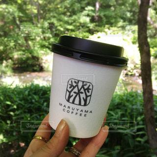 カフェ,自然,コーヒー,COFFEE,森,テラス,お茶,珈琲,cafe,喫茶店,軽井沢,ハルニレテラス