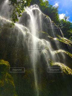 背景の木と滝の写真・画像素材[1324064]