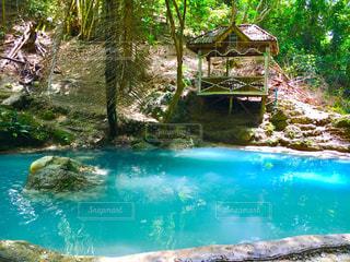 プールの水の写真・画像素材[1324101]