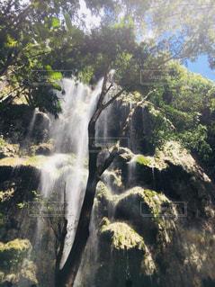 森の中の大きな滝の写真・画像素材[1448056]
