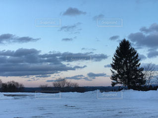 雪景色の写真・画像素材[1736206]