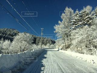 雪道の写真・画像素材[1736231]