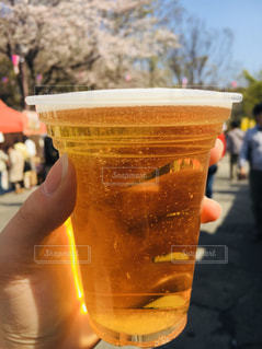 花,春,桜,木,手,花見,お花見,イベント,ビール,乾杯,ドリンク