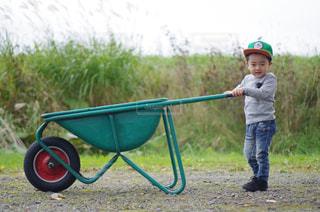 草の中に立っている小さな男の子の写真・画像素材[880544]