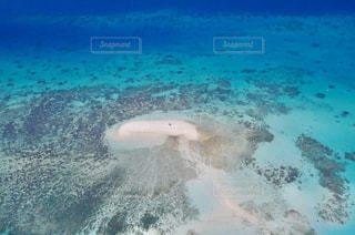 水の体の写真・画像素材[1319262]