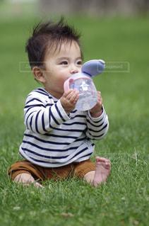 野原に座っている赤ん坊の写真・画像素材[2092605]
