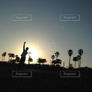 キリン草の上に立ってのグループ カバー フィールドの写真・画像素材[1275921]