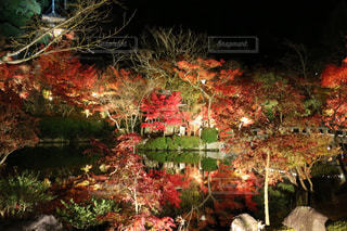 京都 観光地 - No.906266