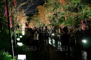 「京の七夕」の写真・画像素材[917421]