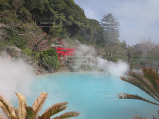 水から出てくる煙の木の写真・画像素材[1050898]