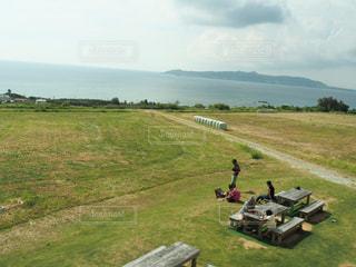海,芝生,晴れ,青空,休日,レジャー,お散歩,休暇