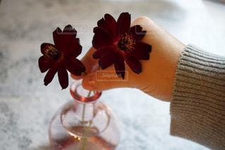 テーブルの上の花の花瓶の写真・画像素材[868921]