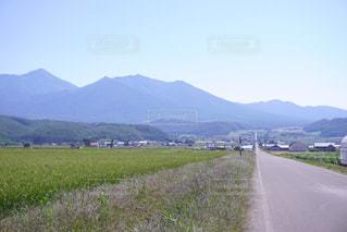 山の道観の写真・画像素材[880750]
