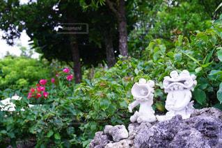 花の庭の像の写真・画像素材[896700]