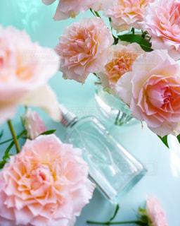 近くの花のアップの写真・画像素材[1367939]