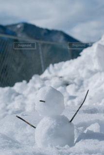 冬の写真・画像素材[344026]