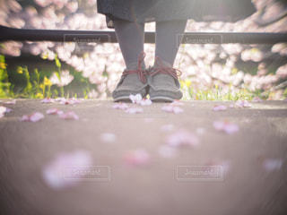 花の前に立っている人 - No.1240863