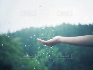 手の中で弾け飛ぶ雨の写真・画像素材[2182079]