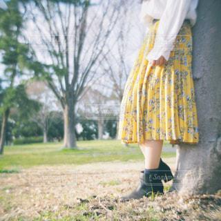 黄色いドレスを着た人の写真・画像素材[2741753]