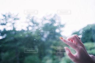 手のクローズアップの写真・画像素材[2990611]
