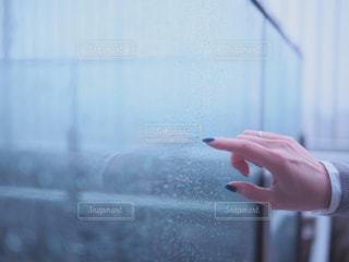 雨と雫の写真・画像素材[2990613]