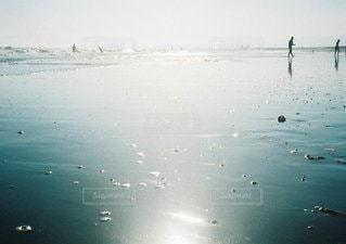 夏の海の写真・画像素材[3544891]