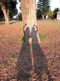 2人の影の写真・画像素材[3827715]
