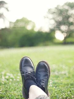 野原に座っている人の写真・画像素材[4429469]