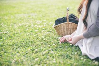 公園の原っぱで花を摘む女性の写真・画像素材[4465813]